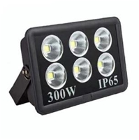 ĐÈN PHA LED COB PLUS 300W